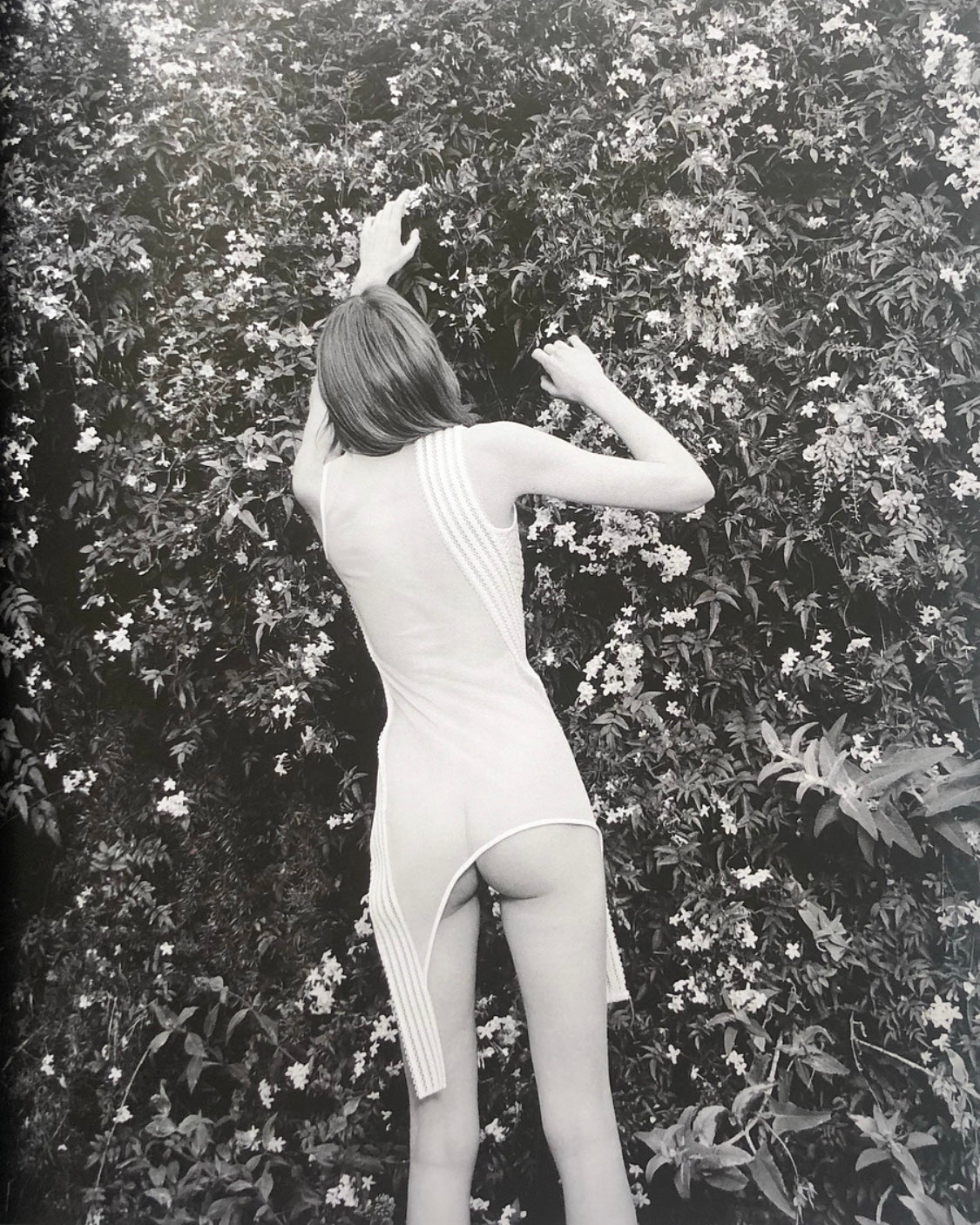 <b>Nudes Curated by Julien Dossena </b><br>Coco Capitán - Janus Books
