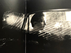 <b>Damaged Negatives </b><br>Glen Luchford - Janus Books