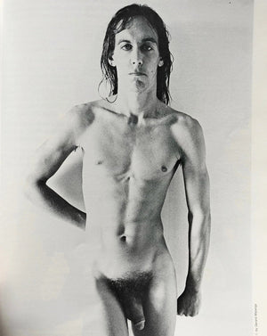 <b>I Need More </b><br>Iggy Pop - Janus Books