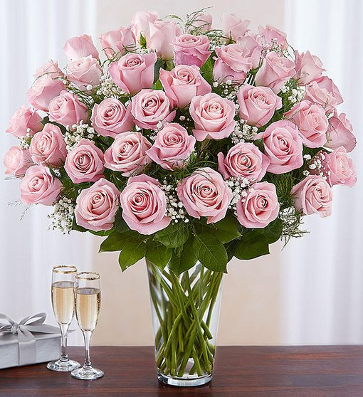 Captivating Fashion - Long Stem Pink Roses
