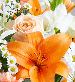 Forever After Peach, White, and Orange