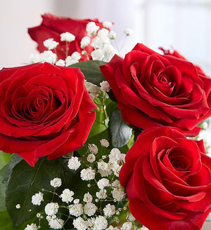 Lovely Dozen Red Roses