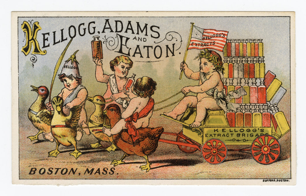 Victorian Kellogg, Adams & Eaton Extract Trade Card || Cherubs on Chicks