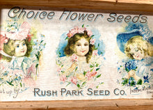 Load image into Gallery viewer, Three Kids, Choice FLOWER SEEDS Box, Old Vintage, Rush Park Seed Co.