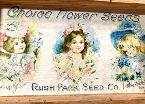 Three Kids, Choice FLOWER SEEDS Box, Old Vintage, Rush Park Seed Co.