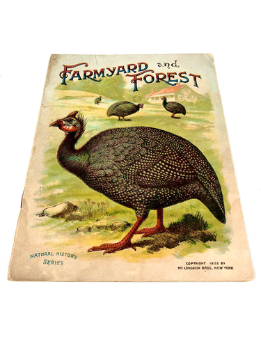 1902 FARMYARD AND FOREST Natural History Series Children's Booklet, Thanksgiving || McLoughlin Bros.