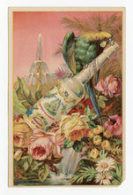 Load image into Gallery viewer, Victorian Murray & Lanman Florida Water, Perfume, Parrot Trade Card