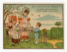 Load image into Gallery viewer, Victorian Allen's Lung Balsam, Quack Medicine || Pharmacy, Kids, Picnic