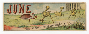 Victorian Alden Fruit Vinegar Trade Card || June Chicks Bookmark
