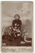 Load image into Gallery viewer, Victorian CABINET CARD, East Liverpool, Ohio, Cullertson's Art Studio || Girl with Flowers, Waterfall background