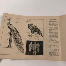 Load image into Gallery viewer, Bird Illustration Lesson || Industrial Applied Art Book