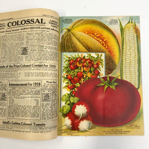 Vintage Isbell's Co. Seed Catalogue