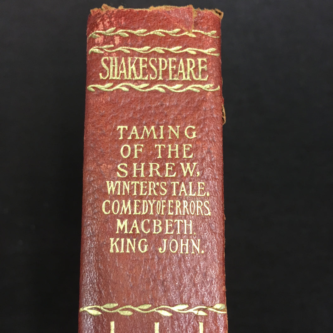 Old Vintage SHAKESPEARE Book, Taming of the shrew, MacBeth, Ling John, winters tale - TheBoxSF