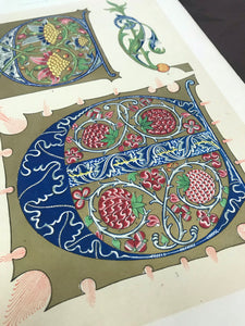 Beautiful Chromolithograph Book Plate Illuminated Letters About 150 Years Old - Plate Number 57