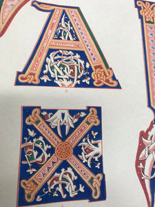 Beautiful Chromolithograph Book Plate Illuminated Letters About 150 Years Old - Plate Number 25