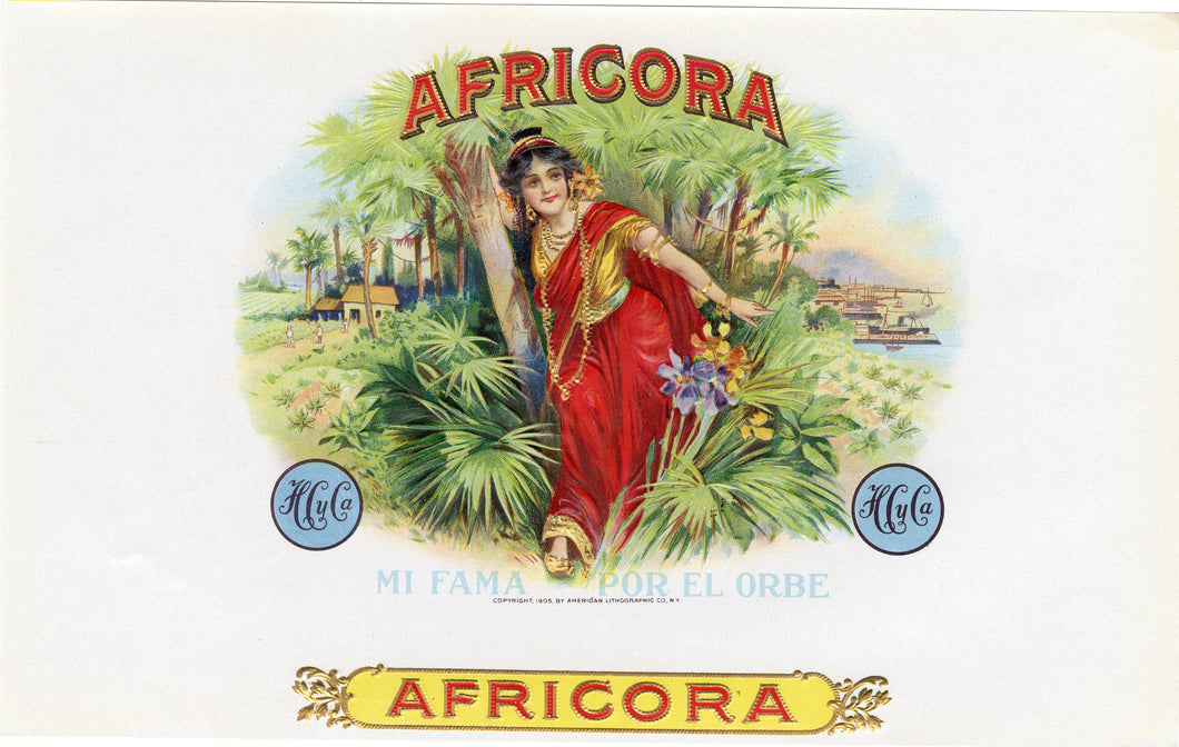 Antique, Unused AFRICORA Cigar, Tobacco Label || Gold, Embossed