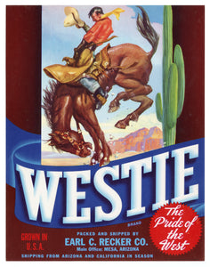 Vintage, Unused WESTIE Fruit, Vegetable Crate Label || Mesa, Az.