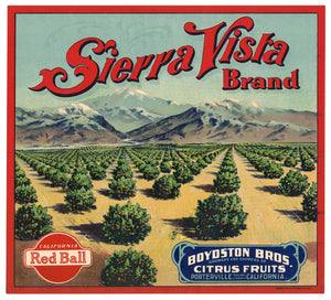 Vintage, Unused SIERRA VISTA Brand Citrus Fruit Label || Porterville, Tulare, Ca.