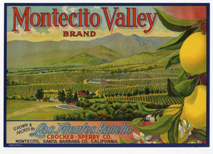 Vintage, Unused MONTECITO VALLEY Lemon, Citrus, Fruit Label || Montecito, Ca.