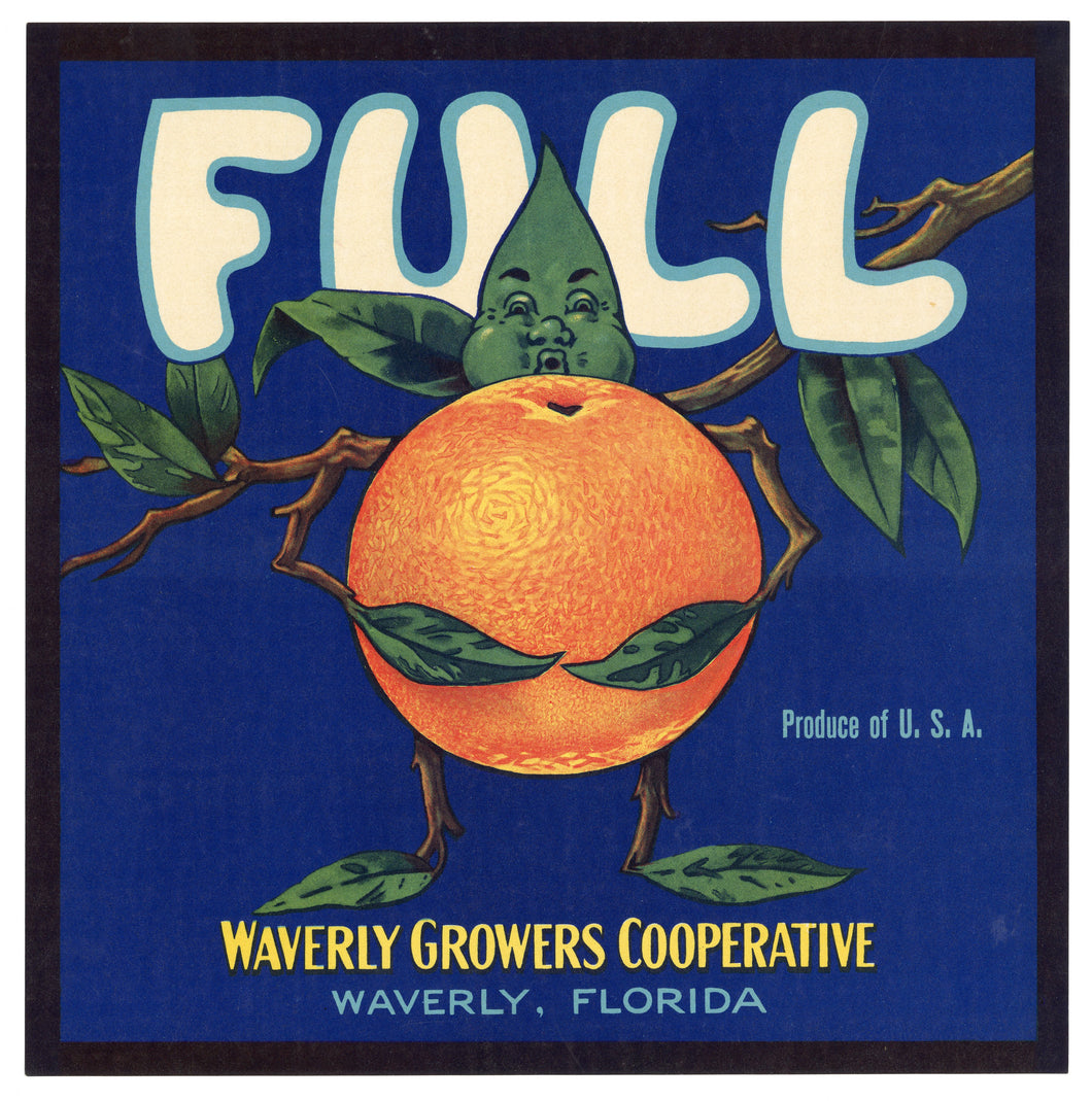 Vintage, Unused FULL Brand Orange Fruit Crate Label || Waverly, Florida