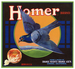 Vintage, Unused HOMER Orange Fruit Crate Label, Pigeon || Corona, California