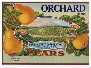 Vintage, Unused ORCHARD Brand Pear, Fruit Crate Label || Yakima, Washington
