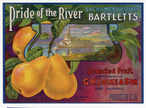 Vintage, Unused PRIDE OF THE RIVER Pear, Fruit Crate Label || Locke, Ca.
