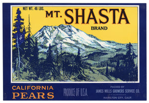 Vintage, Unused MT. SHASTA Brand Pear Fruit Crate Label || Hamilton City, Ca.