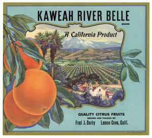 Vintage, Unused KAWEAH RIVER BELLE Orange Fruit Crate Label || Lemon Cove, Ca.