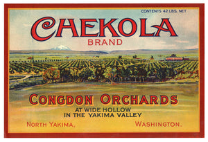 Vintage, Unused CHEKOLA Brand Apple Fruit Crate Label || North Yakima, Washington