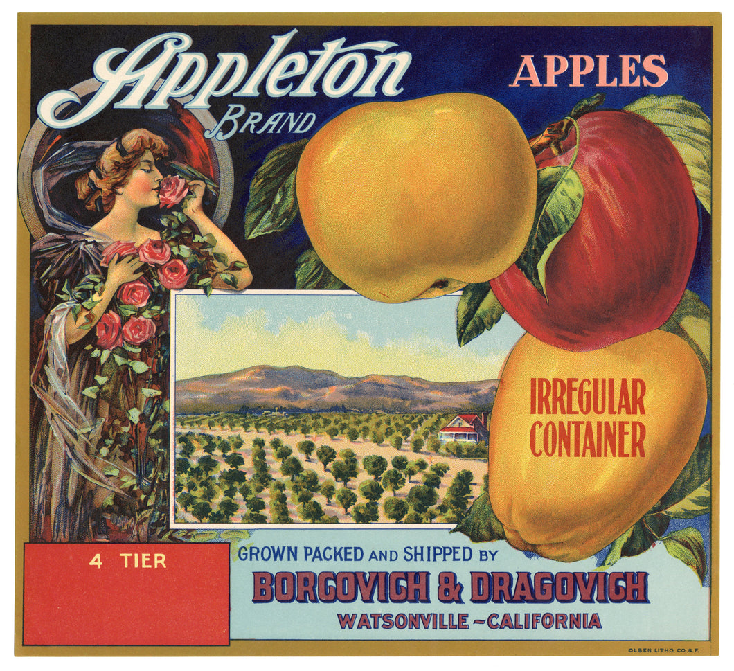 Vintage, Unused APPLETON Brand Apple Fruit Crate Label || Watsonville, Ca.