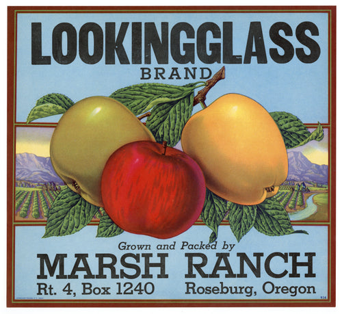 Vintage, Unused LOOKING GLASS Brand Apple Fruit Crate Label || Roseburg, Oregon