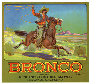 Vintage, Unused BRONCO Brand Apple Fruit Crate Label, Cowboy || Redlands, Ca.