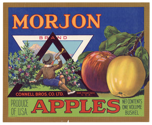 Vintage, Unused MORJON Brand Apple Crate Label || San Francisco, Ca.