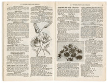 Load image into Gallery viewer, 00 1931 Vintage Butzer's Seeds Catalogue