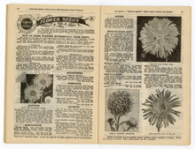 Load image into Gallery viewer, 1928 Antique ROUTLEDGE SEED & FLORAL CO. Seed Catalog, Farming, Plants