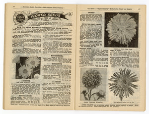 1928 Antique ROUTLEDGE SEED & FLORAL CO. Seed Catalog, Farming, Plants