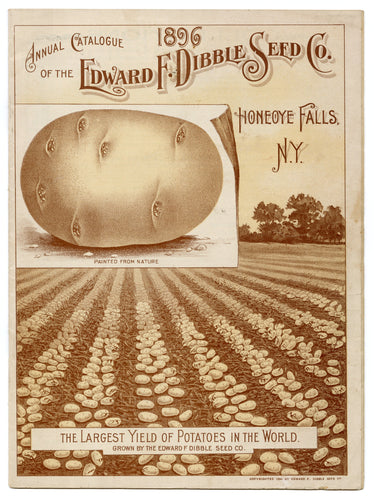 1896 Antique EDWARD F. DIBBLE SEED CATALOG, Potatoes, Vegetables, Farming