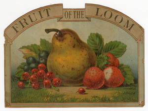 Antique Early 1900's FRUIT OF THE LOOM Box Label, Vintage Fashion