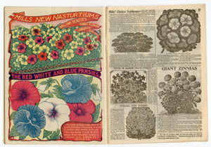 1908 Antique MILL'S Seed Catalog, Rose Hill, NY, Farming, Gardening, Plants, Flowers