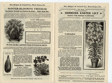 Load image into Gallery viewer, 1903 Antique NEW GUIDE TO ROSE CULTURE Seed Catalog, Plants, Flowers, West Grove, PA.
