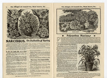 Load image into Gallery viewer, 1903 Antique NEW GUIDE TO ROSE CULTURE Seed Catalog, Plants, Flowers, West Grove, PA.\