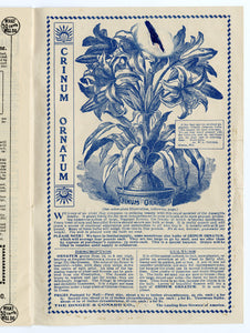 1903 Antique NEW GUIDE TO ROSE CULTURE Seed Catalog, Plants, Flowers, West Grove, PA.