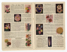 Load image into Gallery viewer, 1920's Antique QUALITY SEED CATALOG, Detroit, Jack & Beanstalk, Farming, Gardening