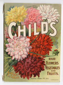 1904 Antique CHILDS' Rare Flowers, Vegetables & Fruits Seed Catalog