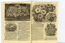 Load image into Gallery viewer, 1904 Antique CHILDS' Rare Flowers, Vegetables & Fruits Seed Catalog