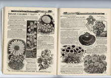 Load image into Gallery viewer, 1901 Antique PETER HENDERSON Seed Catalog, Gardening, Farming, Plants, Flowers