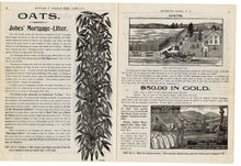 Load image into Gallery viewer, 1896 Antique EDWARD F. DIBBLE SEED CATALOG, Plants, Vegetables, Potatoes, Corn, Farming