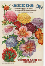 Load image into Gallery viewer, 1929 DEPOSIT SEED CO. Catalog, Deposit, NY, Garden, Flowers, Farm