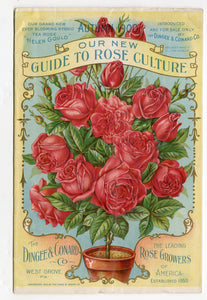 1900 Antique AGUIDE TO ROSE CULTURE Seed Catalog, West Grove,Pa., Flowers, Garden